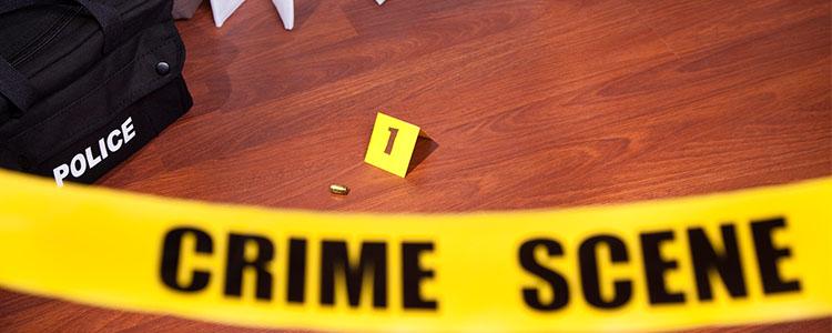 Suicide & Homicide Clean up